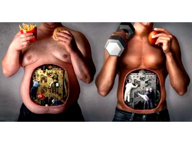 Спортивное питание для новичков.